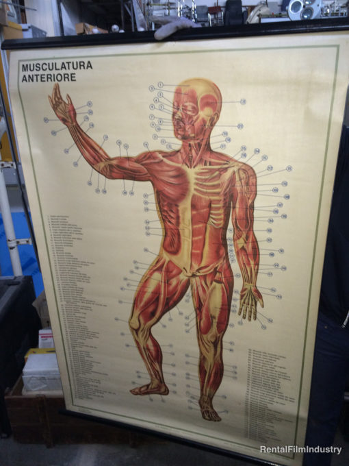 Arredamento da ospedale e studio medico a scelta 4