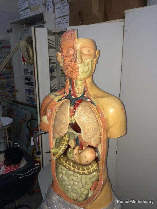 Arredamento da ospedale e studio medico a sceltaArredamento da ospedale e studio medico a scelta 2