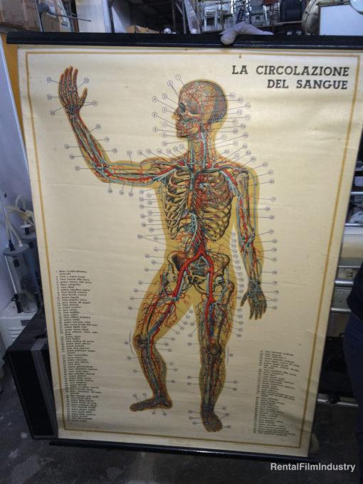 Arredamento da ospedale e studio medico a scelta 6